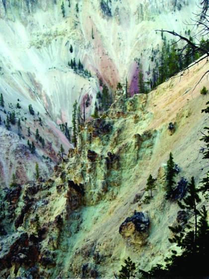 Yellowstone 135