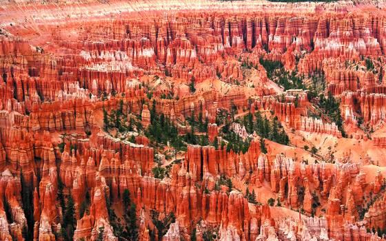 Canyon overlook 1