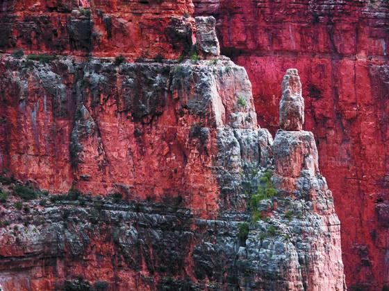 Kaibab canyon 2