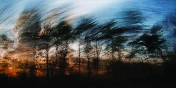 Laurel sunrise 2