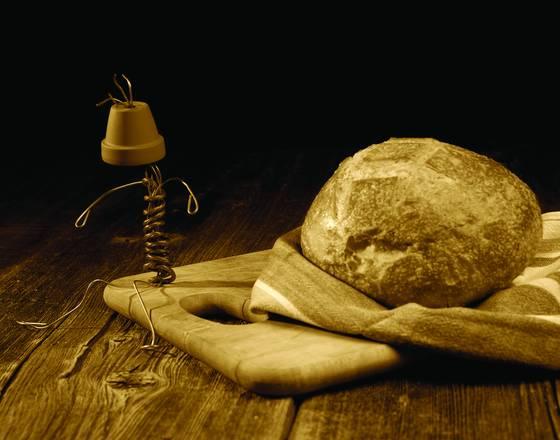 Buckwheat and pothead