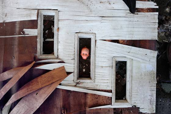 Doll head in window