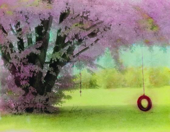 Donna s tree