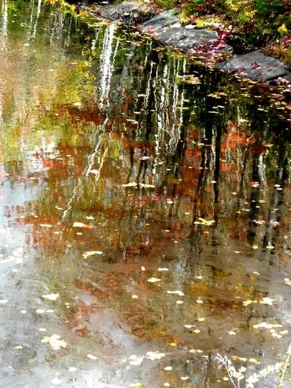 Autumn reflexions