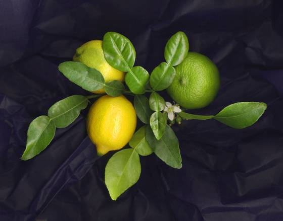 Citrus with kafir leaves