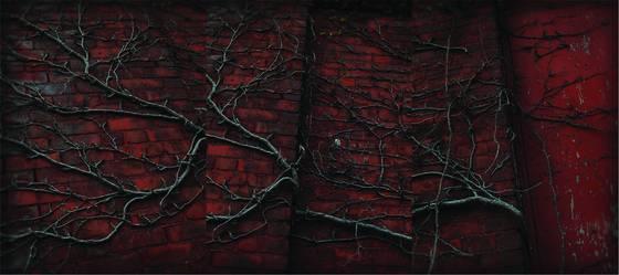 Holyoke wall stitch