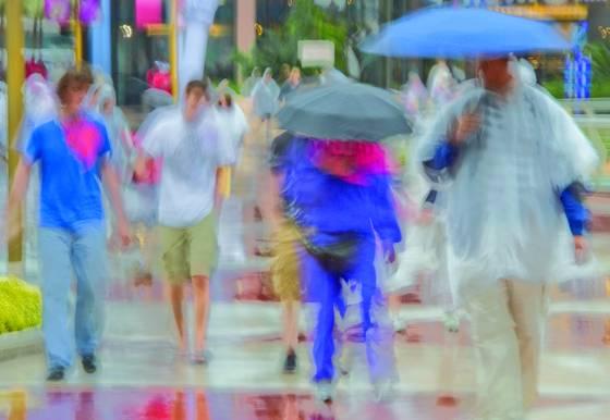 Rainy day impressions 2
