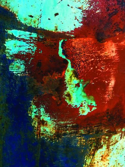 Rust vision 1336