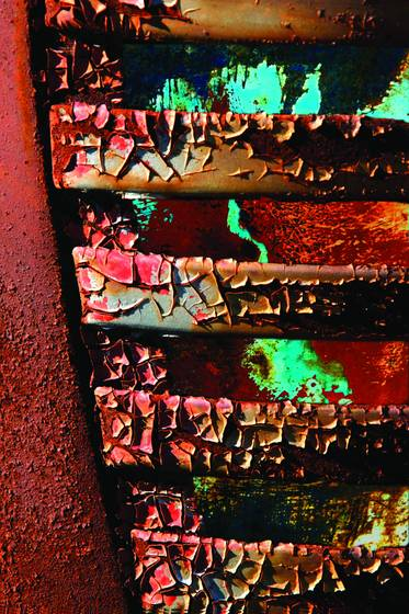Rust vision 1695