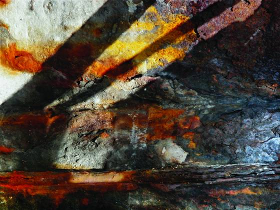 Rust vision 240