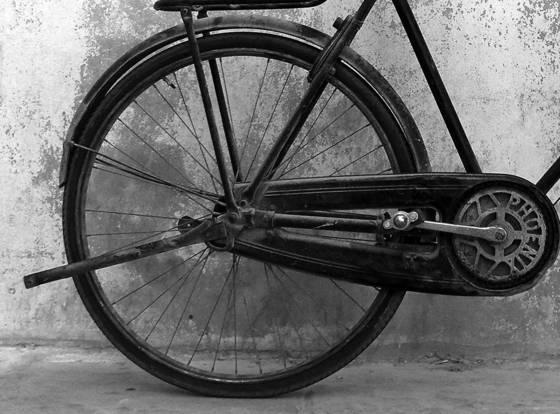 Doha bicycles  3