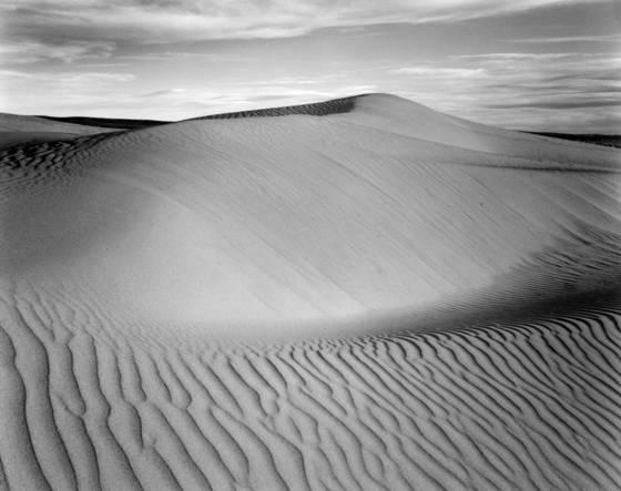 Sand dune hill   crest