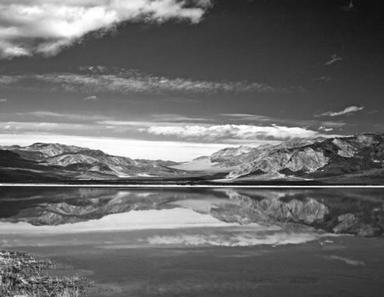 Saline valley marsh