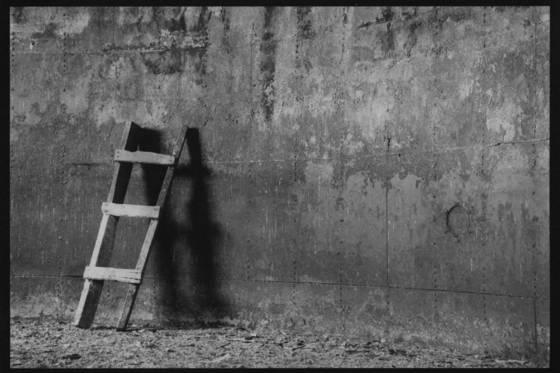Ladder in silo