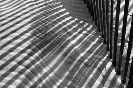 Dune shadows ii