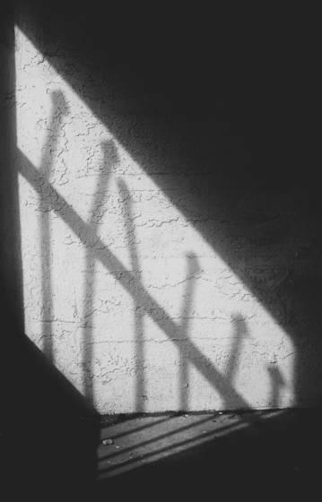Cellbar shadows