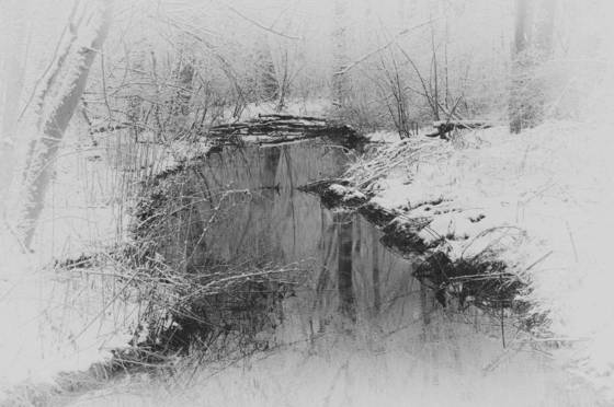 Cold spring park