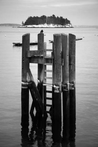 Island on pilings