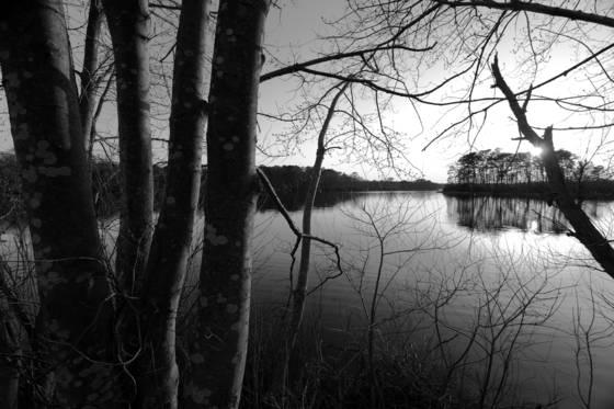 Peconic lake
