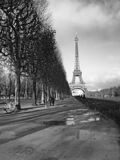 Eiffel reflection