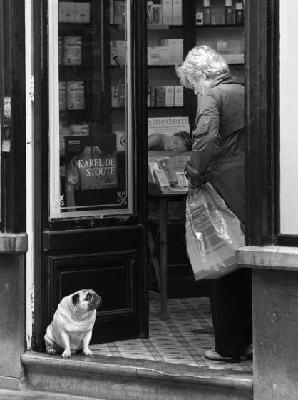 Woman and pug on threshhold