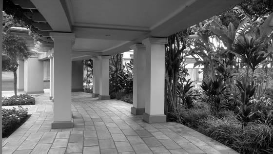 Maui portal
