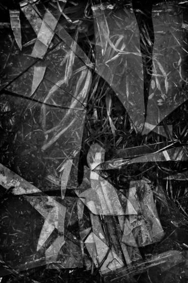 Weeds and broken glass