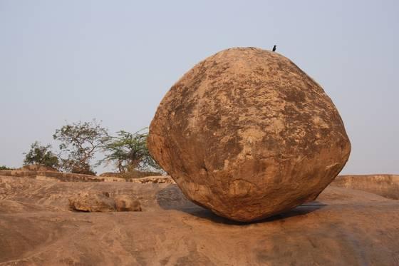 Krishnas butterball