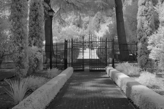 Enter villa montalvo