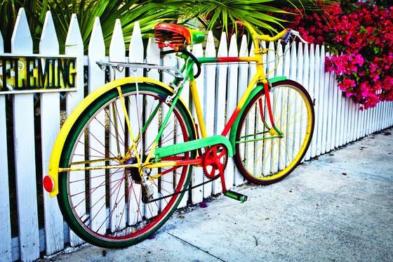 Flemings bike