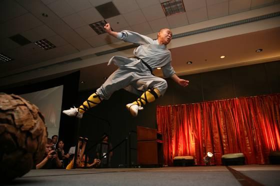 Flying shaolin monk