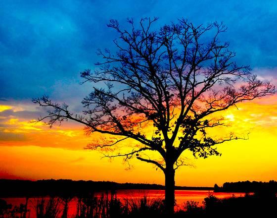 Lake jordan sunset
