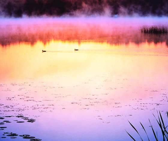Dawn on columbia lake