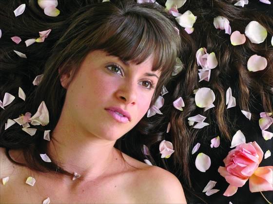 Softness of rose petals