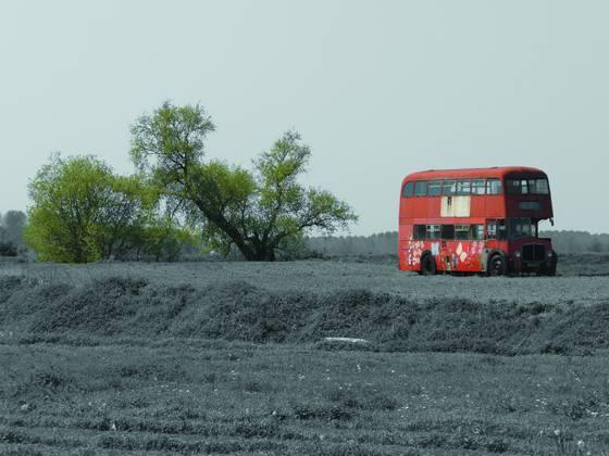 Bus in field