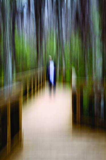 Joel on cypress walk