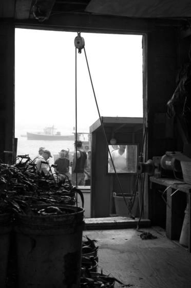Jonesport fishermen