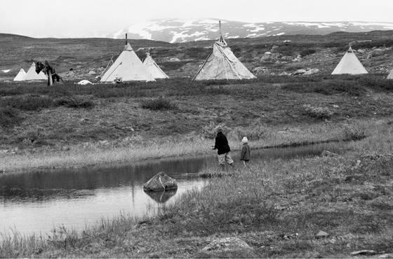 Reindeer herders tepees