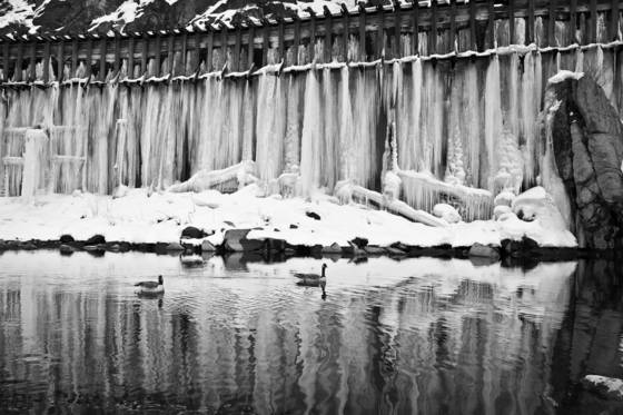 Truckee river flume ice