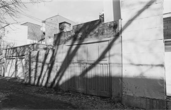 Linear tree curtain