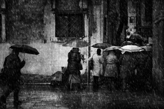 Rain in venice  4