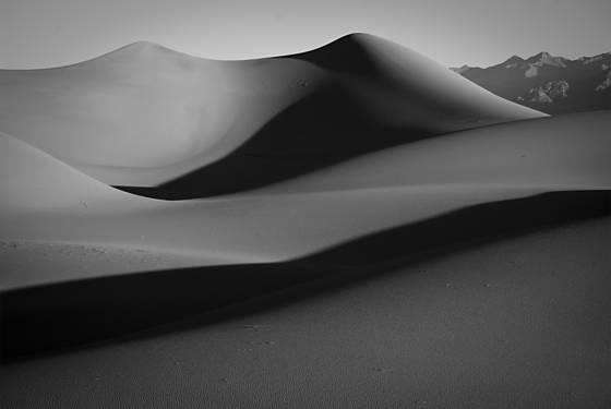 Dune study 11
