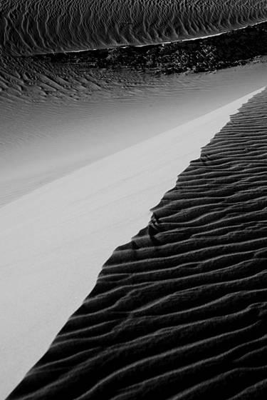 Dune study 8