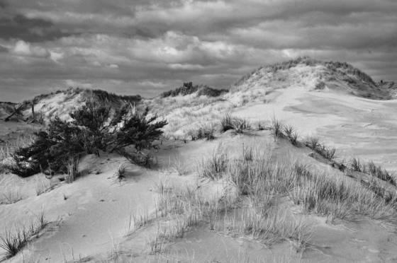 Dunescape 3