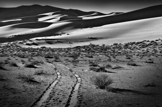 Northern dunes