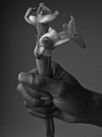 Bruce s hand with flower  1