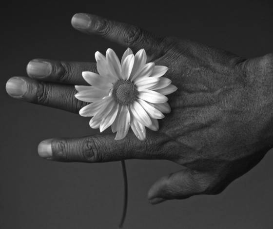 Bruce s hand with flower  2