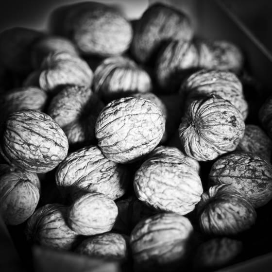 L atelier de claude   walnuts