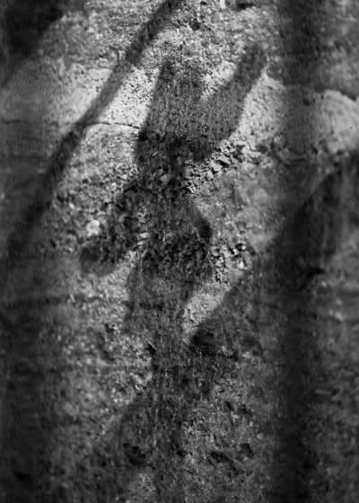 Stone wall shadow