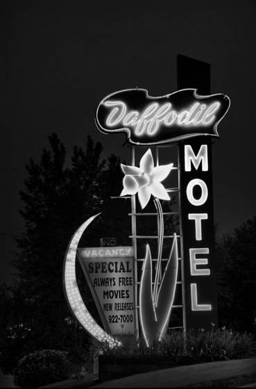 Daffodil hotel